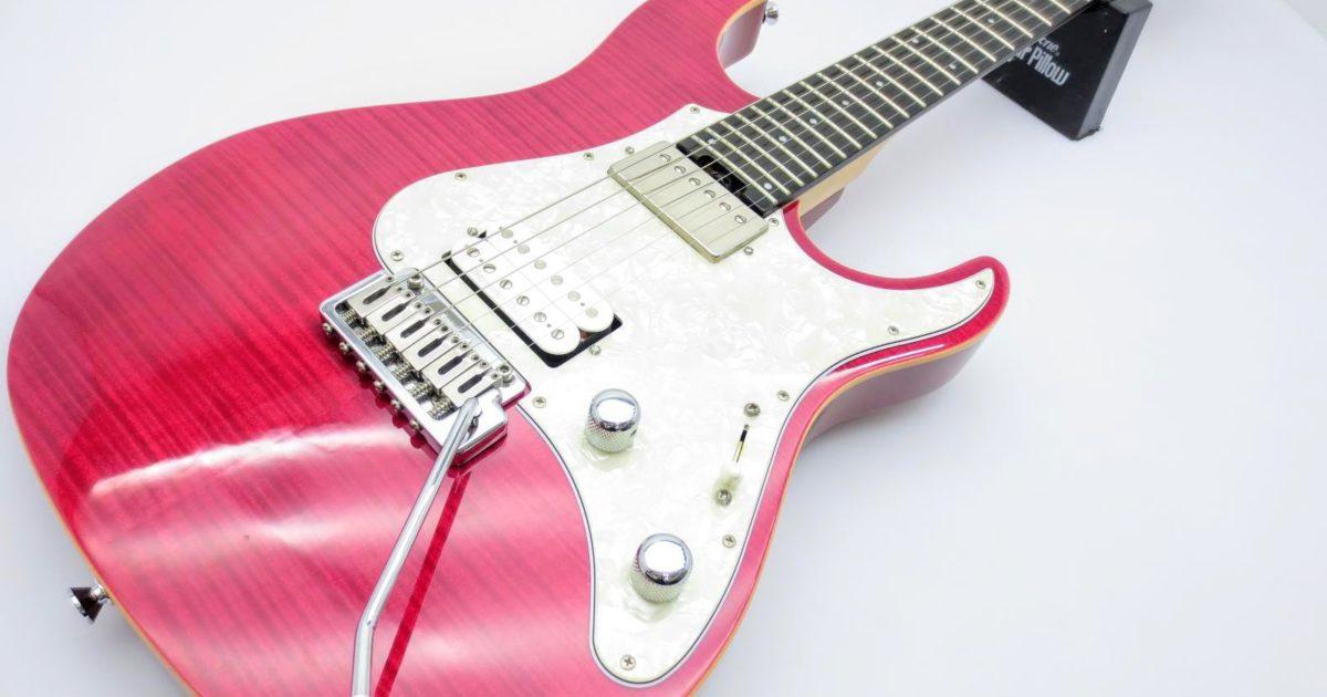 鹿児島県より、EDWARDSのエレキギターE-SN-125を買取させて頂きました!