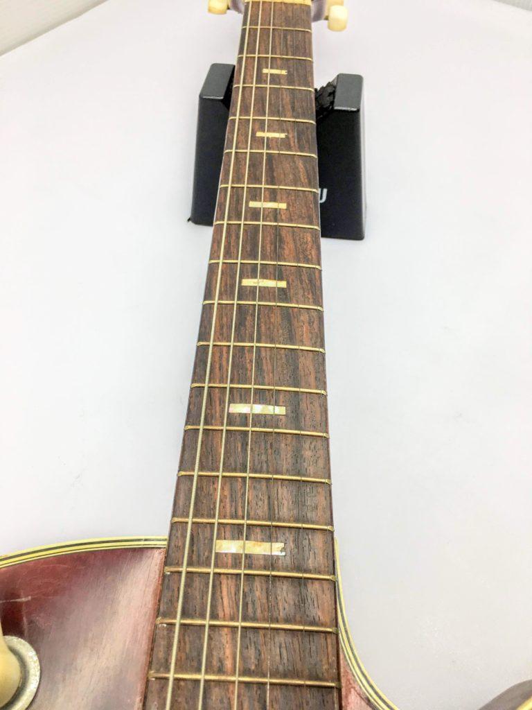 TEISCO ビンテージフルアコ Model8 指板