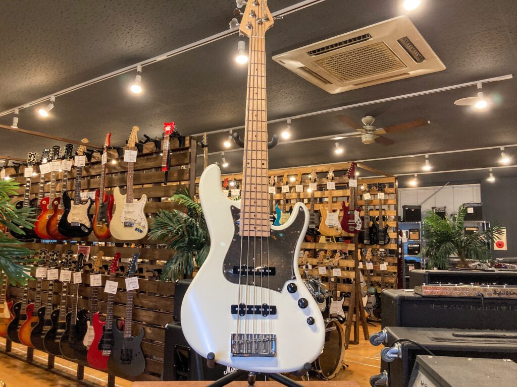 Freedom Custom Guitar Research Anthra 5th alder  全体写真